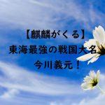 【麒麟がくる】今川義元!