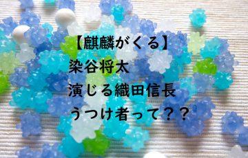 【麒麟がくる】織田信長をどう演じる?